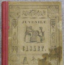 Image of Book - The Juvenile casket.