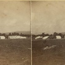 Image of Stereograph - Camp Stark, Tibbitts'  Veteran Corps and Doring's Band, of Troy
