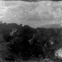 Image of Negative, Glass Plate