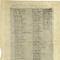 Image of Silver Greys Muster Roll (copy) -