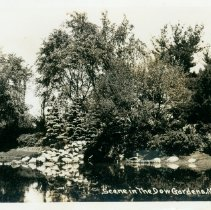 Image of Dow Gardens