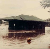 Image of Disasters - 1986 Flood--Ann Street Depot