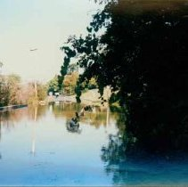 Image of Disasters - 1986 Flood--Main Street at Snake Creek