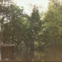 Image of 1986 Flood--Emerson Park