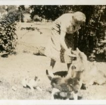 Image of Woman with cats