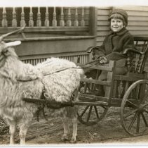 Image of Unknown Children - Unknown Child in a Cart