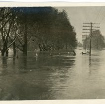 Image of Flood