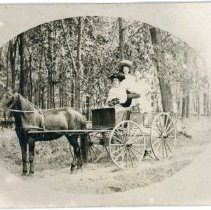 Image of Unknown Women - Women with Horse and Buggy