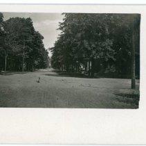 Image of McDonald Street looking toward Grove Street