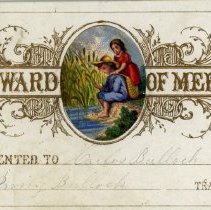 Image of Reward of Merit -