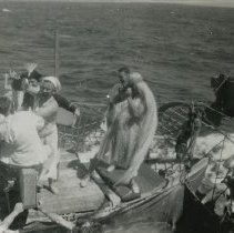 Image of 014.02 - 014.02.50