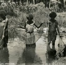 Image of 014.02 - 014.02.68