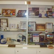 Image of Sun Cities Poms Display Case
