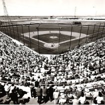 Image of Stadium - Standing room only at the ball game