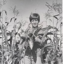 Image of Agricultural Club members - Black and white photo that appeared in the Arizona Republic on November 30, 1967 TALL CORN - Allyson Zachary of Thousand Oaks, Calif., shows a clump of sweet potatoes from the garden patch of her grandparents, A. H. Zacharys, ardent gardeners of Sun City