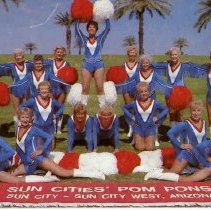 Image of Postcard - Sun City Pom Pons