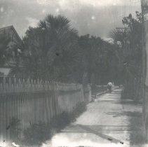 Image of Walkway - Print, Photographic