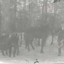 Image of Snow scene in woods - horse and three people - Print, Photographic