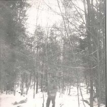 Image of Man with gun in snowy woods - Print, Photographic