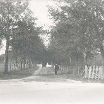 Image of Man in driveway with fences, trees, gate - Print, Photographic