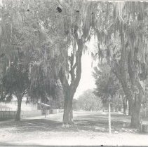 Image of St. Marys, possibly Rutis house at Ash and 9th - Print, Photographic