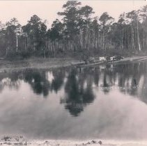 Image of St. Marys River, GA, logging operation - Print, Photographic