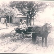 Image of Horsey sisters in a pony cart - Print, Photographic