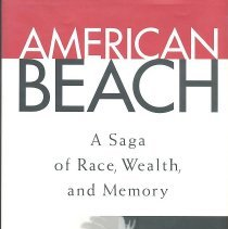 Image of American Beach: a saga of race, wealth, and memory - Book