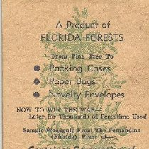 Image of A product of Florida forests (wood pulp postcard) - Postcard