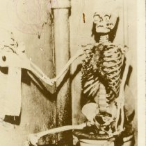 Image of The lost W.P.A. worker