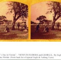 Image of Stereoview: Valentine's Day in Florida - Stereoview