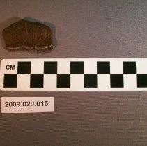 Image of Turtle shell - Fossil