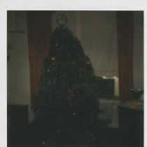 Image of Christmas tree at jail, 1977