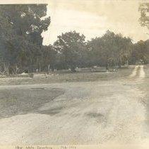 Image of Bosque Bello Cemetery 1947 - Print, Photographic