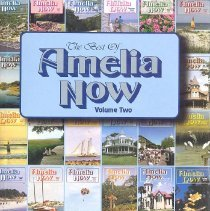 Image of Best of Amelia Now (The):  a collection of articles published in the quarterly magazine of Amelia Island, Florida, from 1991-2000 - Book