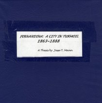 Image of Fernandina: a city in turmoil, 1863-1888 - Book