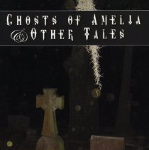 Image of Ghosts of Amelia & other tales - Book