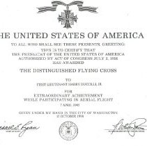 Image of Distinguished Flying Cross