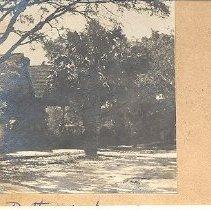 Image of Dotterer House - Postcard