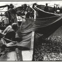 Image of Pogie fishing - Print, Photographic