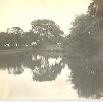Image of Harrison Plantation - Print, Photographic
