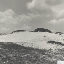 Image of Dunes at American Beach    - Print, Photographic