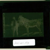 """Image of L G Hirth with a donkey, titled: """"which is which"""" - Negative, Film"""