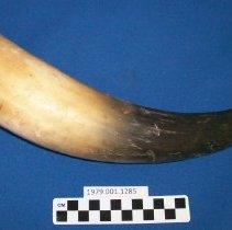 Image of Communication Horn  - Horn