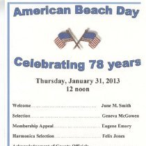 Image of American Beach Day