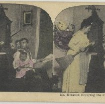 Image of Mr. Henpeck at Home - Stereograph