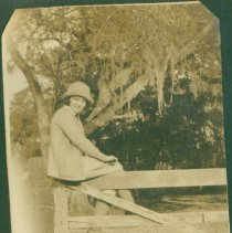 Image of Sittin on a fence rail - Print, Photographic