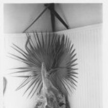 Image of Bones Decker - Print, Photographic
