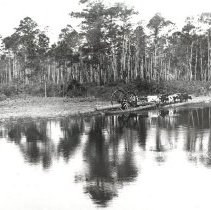 Image of Hauling Logs - Print, Photographic