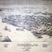 Image of Fernandina 1884